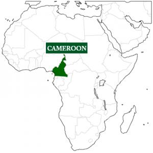 Volunteer in Cameroon